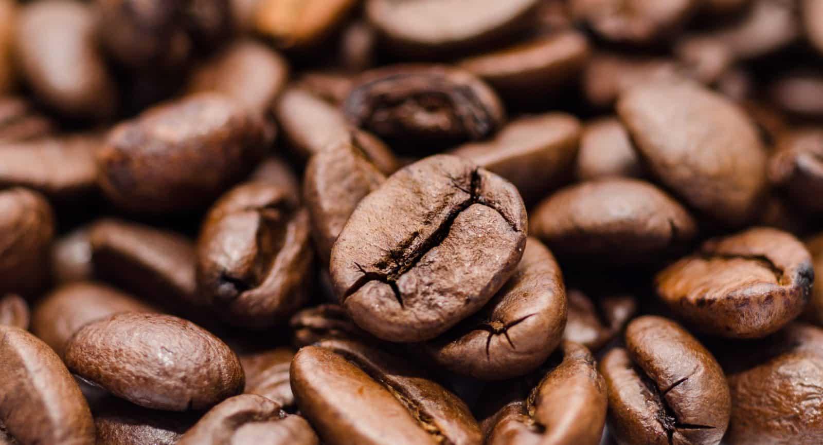 Queer Coffee: dark roast Peru