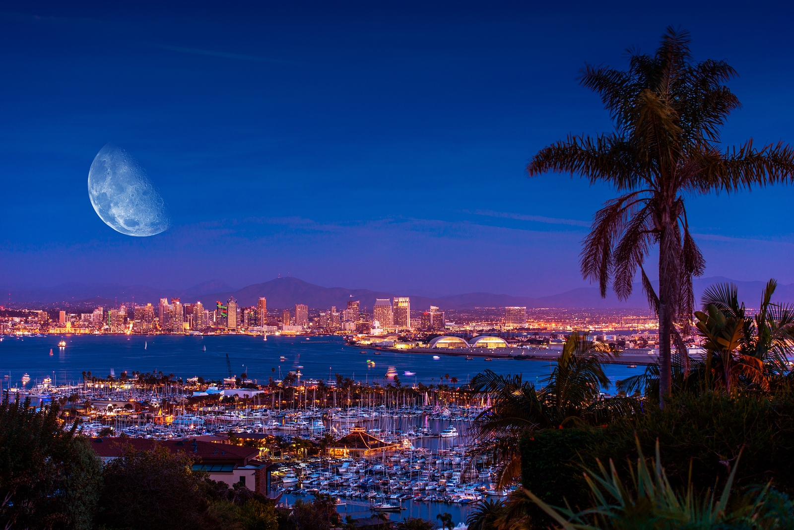 San Diego Night With Moon