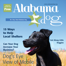 Alabama Dog Magazine