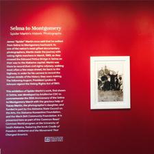 Spider Martin Exhibit Graphics