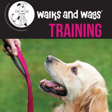 Walks & Wags Training Brochure