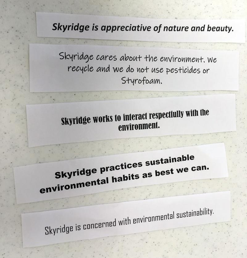 Skyridge Church Sustainability