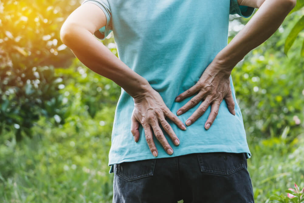Lower Back and Buttock Pain