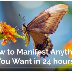 One Astounding Trick to Manifest Anything You Want in 24 hours