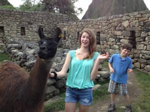 We met a llama family passing through.