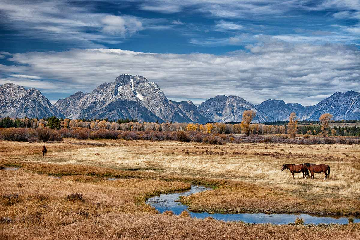 Grand Teton NP      CRW_0549-1200