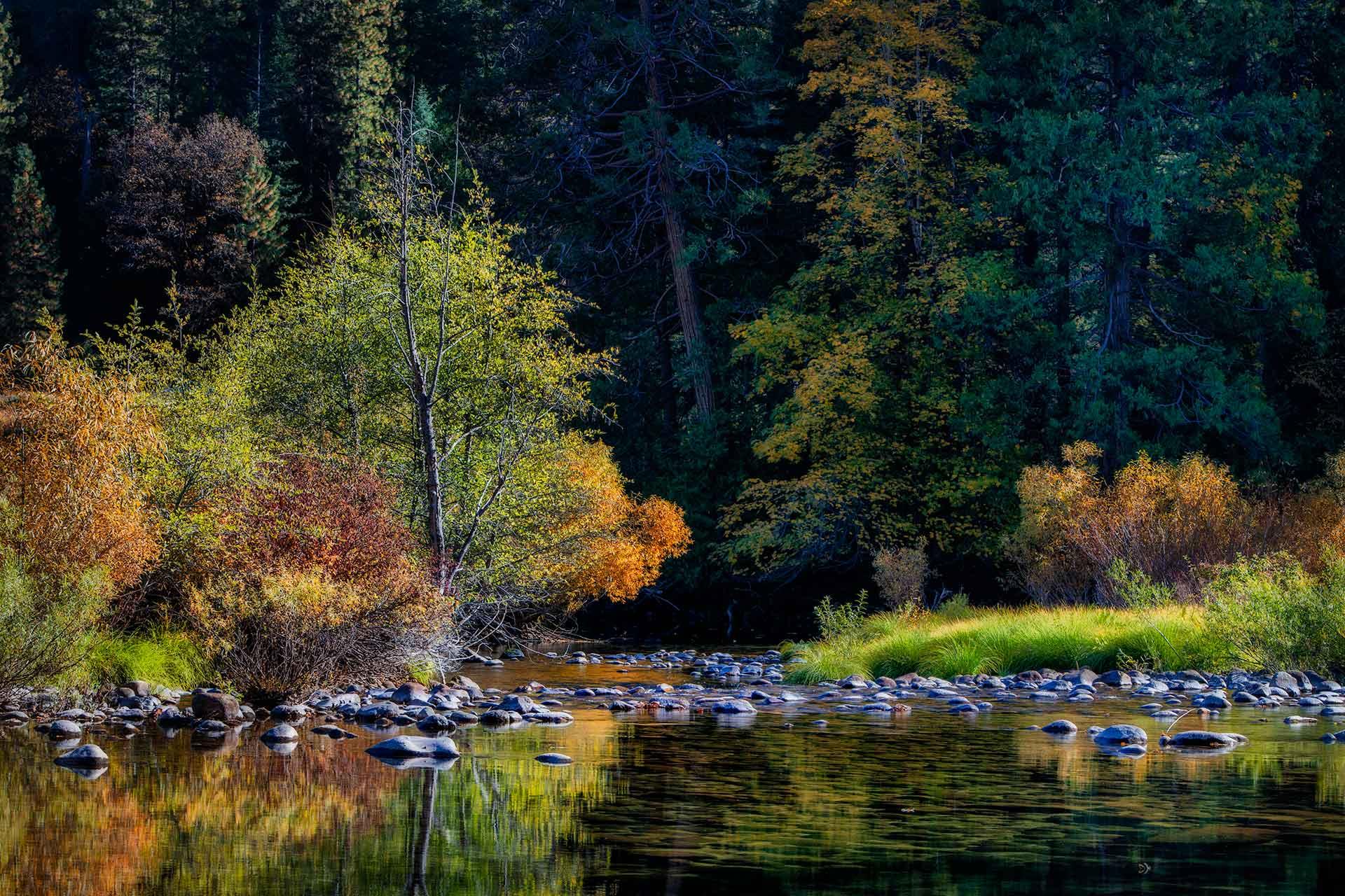 Yosemite NP   _MG_4535-1920