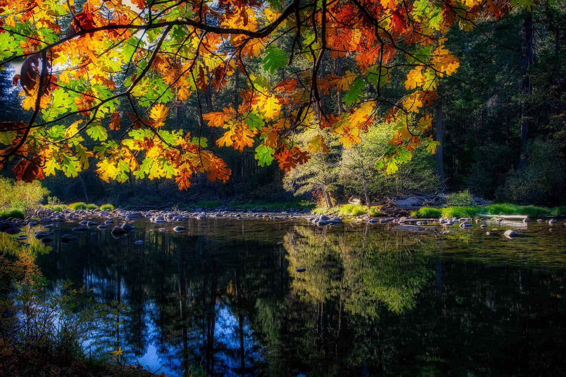 Yosemite   _MG_6149-1090