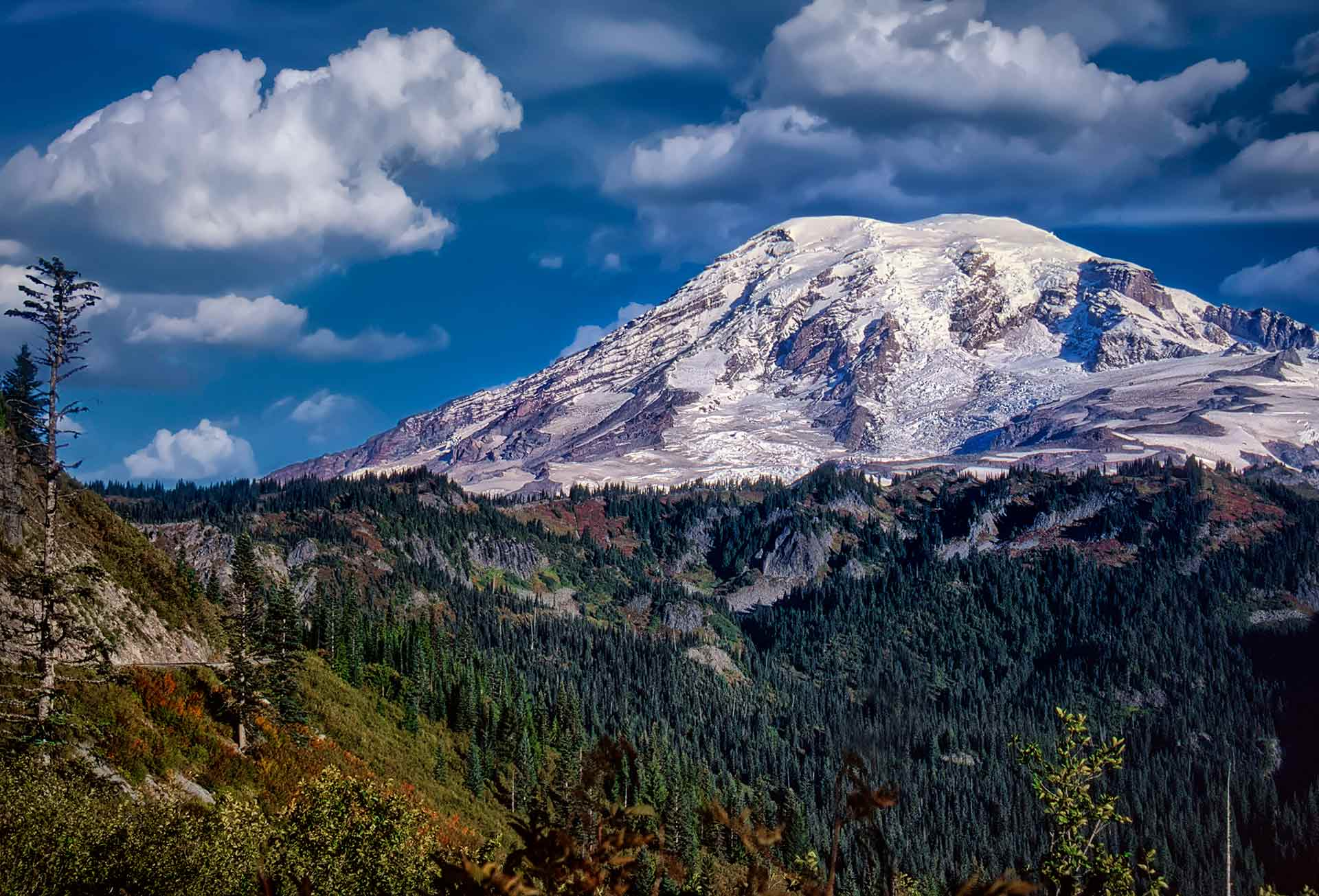 Mt. Rainier  washington