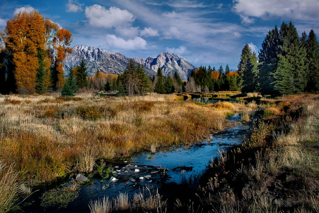 Schwabacher Landing area of Grand Teton NP