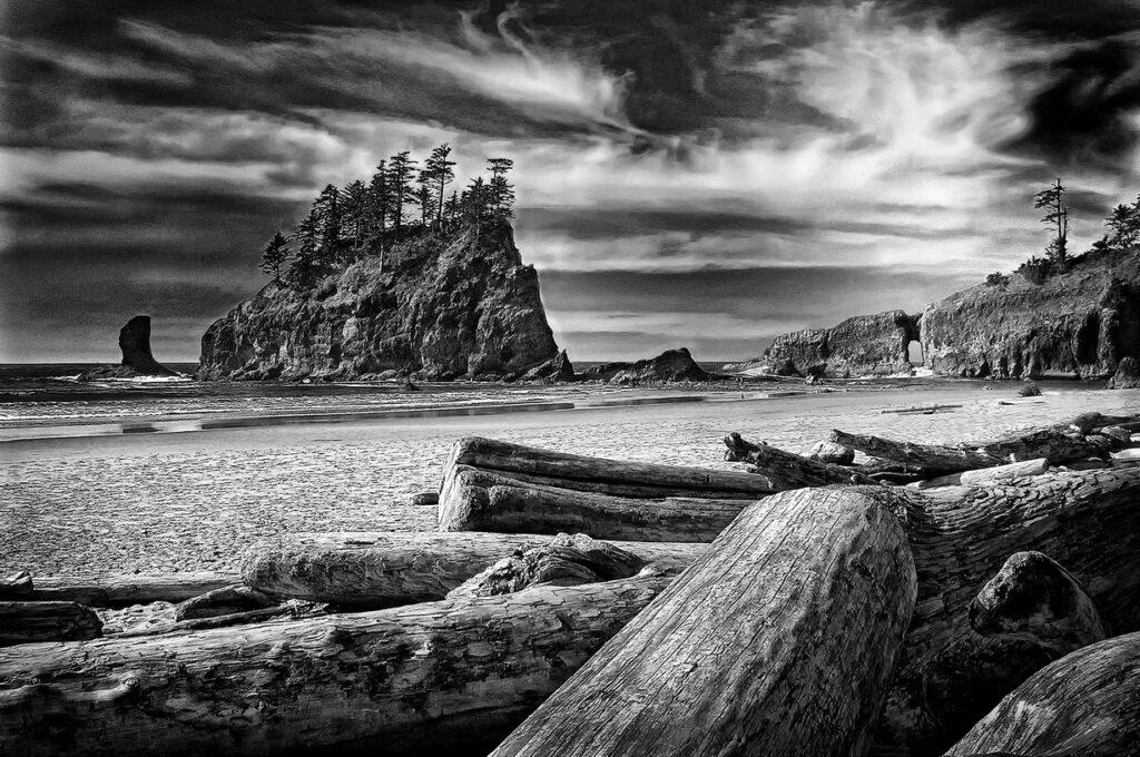 Washington Coast   WACoast0974-BW-SilvEfex
