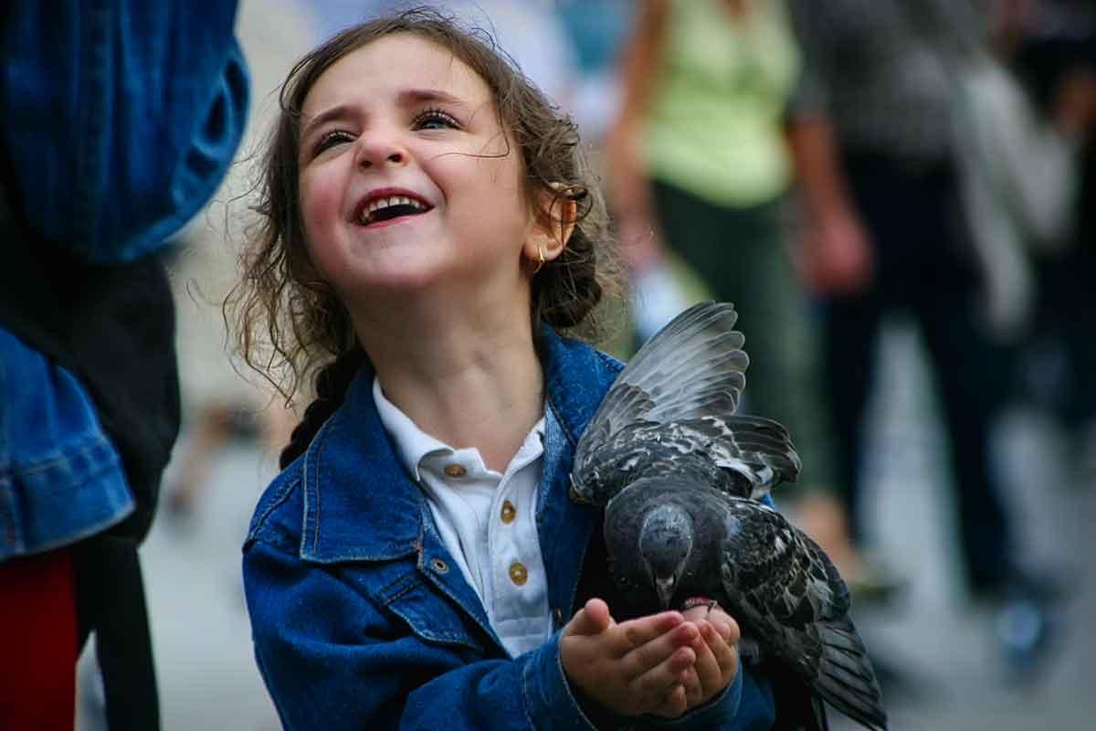 St. Mark's Square - Venice Birds05–1200