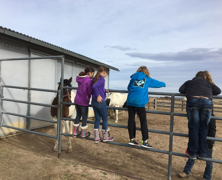 Sky View Farm Equine Path Therapy with Children and Horses at the barn yard