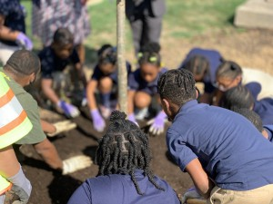Ketcham students put their green thumbs to use to plant a memorial tree.