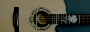 Custom Built Guitars by Mike Haney the Guitar Doctor