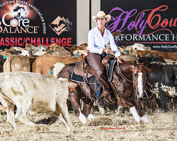 2017 PCCHA Coyote Rock Ranch Roundup