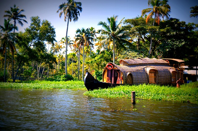 Best Places To Visit in Kerala
