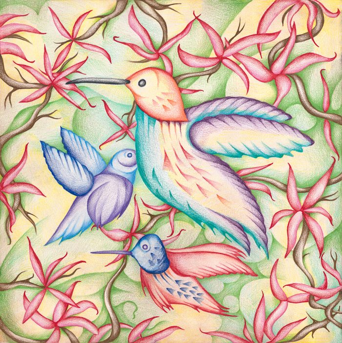 hummingbirds 1