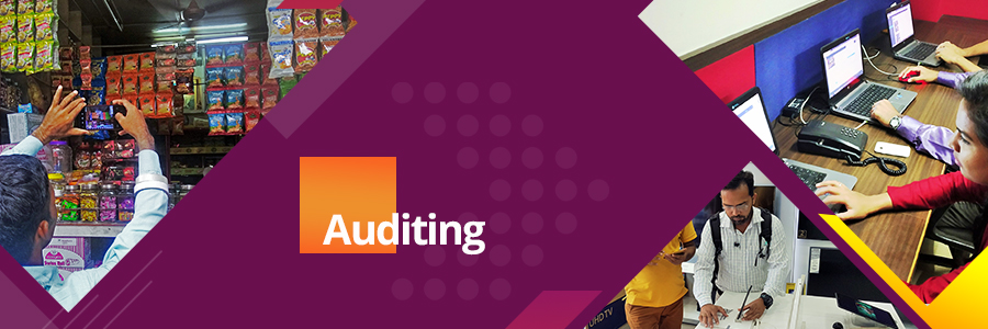 In-Store Retail Audit Services : PPMS