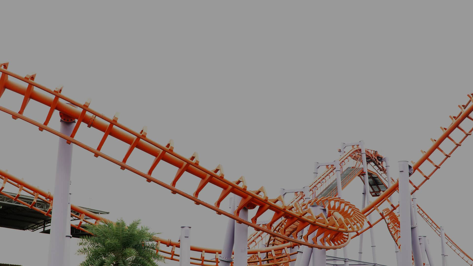 The Job Search Roller Coaster