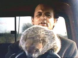 groundhog-movie