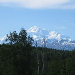 We were lucky to see Mt. Mckinley four days without its head in the clouds