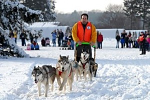 Watching winter outdoor activities such as dogsledding at the Morton Arboretum in Lisle, Illinois is fun if dressed for the occasion