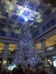 Macy's Great Tree Photo by Debbie Jacobs