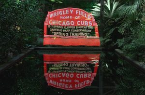 Celebrate the World Series Cubs at Garfield Park conservatory's Spring Training show. Chicago Park District photo