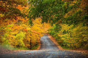 Fall is a wonderful time to take a drive. Traverse City Tourism photo
