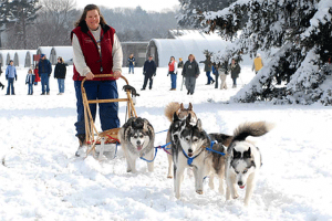 Visit Husky Heroes at the Morton Arboretum. Morton Arb photo