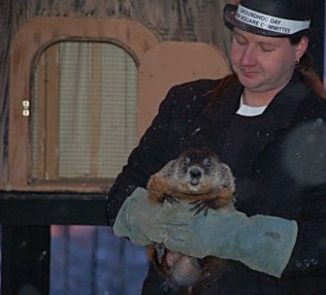 Groundhog Woodstock Willie predicts winter or early spring each year in Woodstock IL where the Groundhog Day movie was filmed. (Photo courtesy of Woodstock)