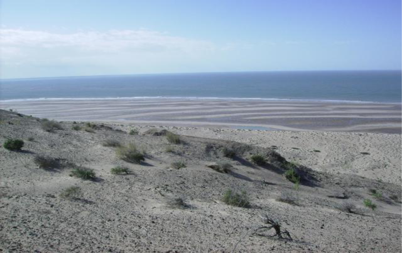Desirable Unspoiled Beachfront 4
