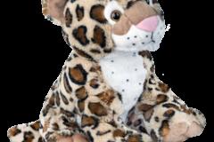 charlie-cheetah