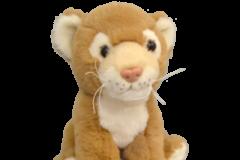 delilah-lion