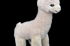 dolly-llama