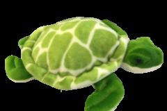 shelldon-turtle