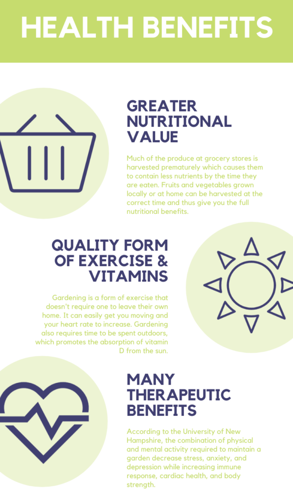 Health Benefits Infographic