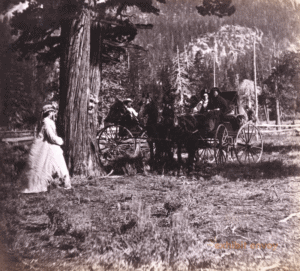 Travelers wearing outfits from the early 1900s enjoy time outdoors. A woman stands next to a tree and a couple sits in a carriage.