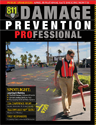 Damage Prevention Professional Spring 2012