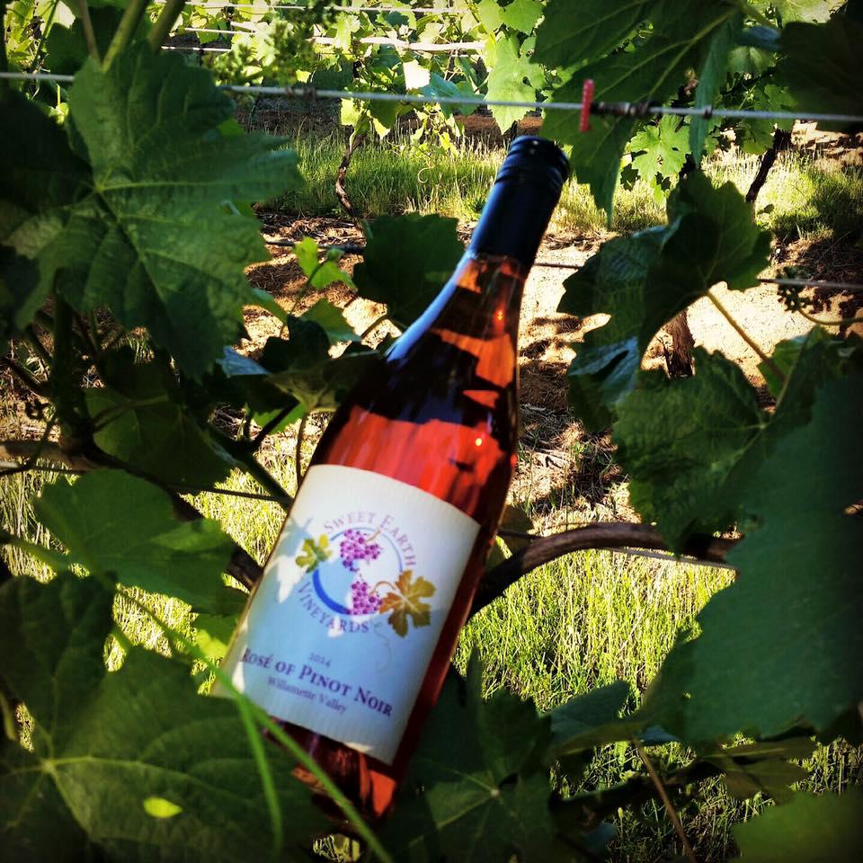 Sweet Earth Vineyard