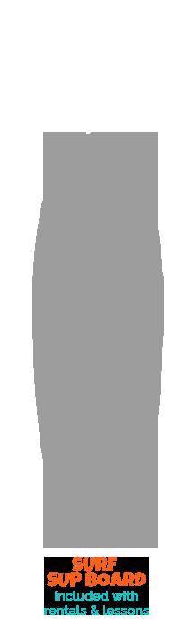 boardsSURF