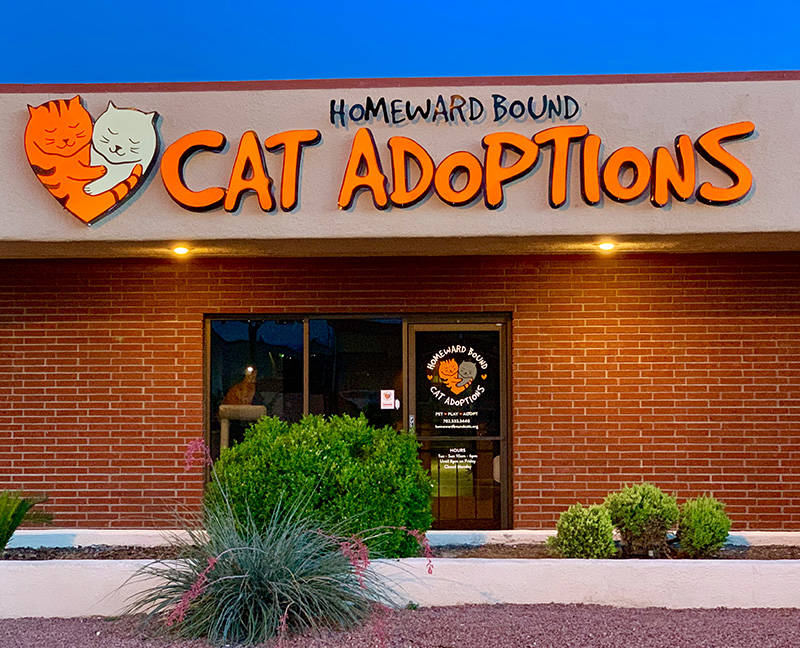 Homeward Bound Cats Adoption Center Exterior