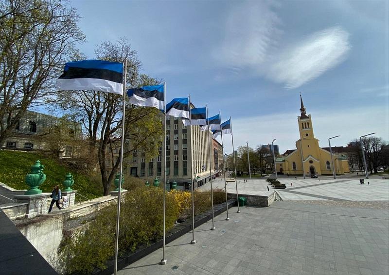 cores bandeira da estonia