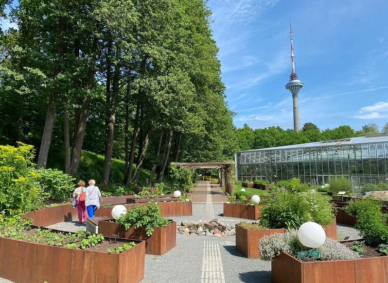 vista da TV Tower do Jardim Botânico de Tallinn photo by Tere Tallinn