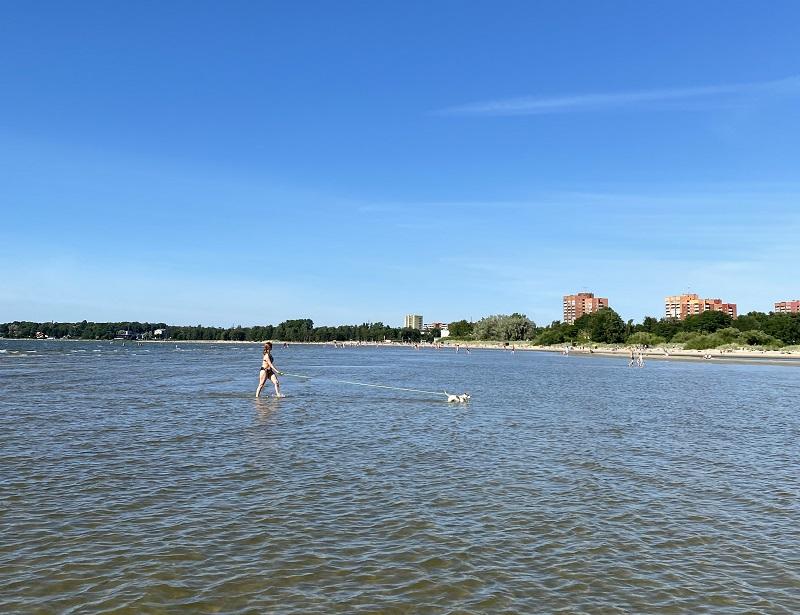 praias pet-friendly em tallinn