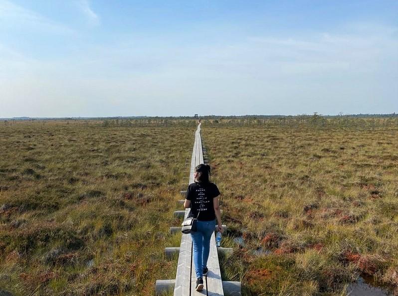 trilha estonia