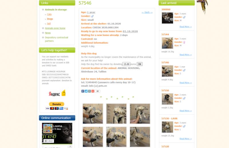 abrigo de animais na estônia