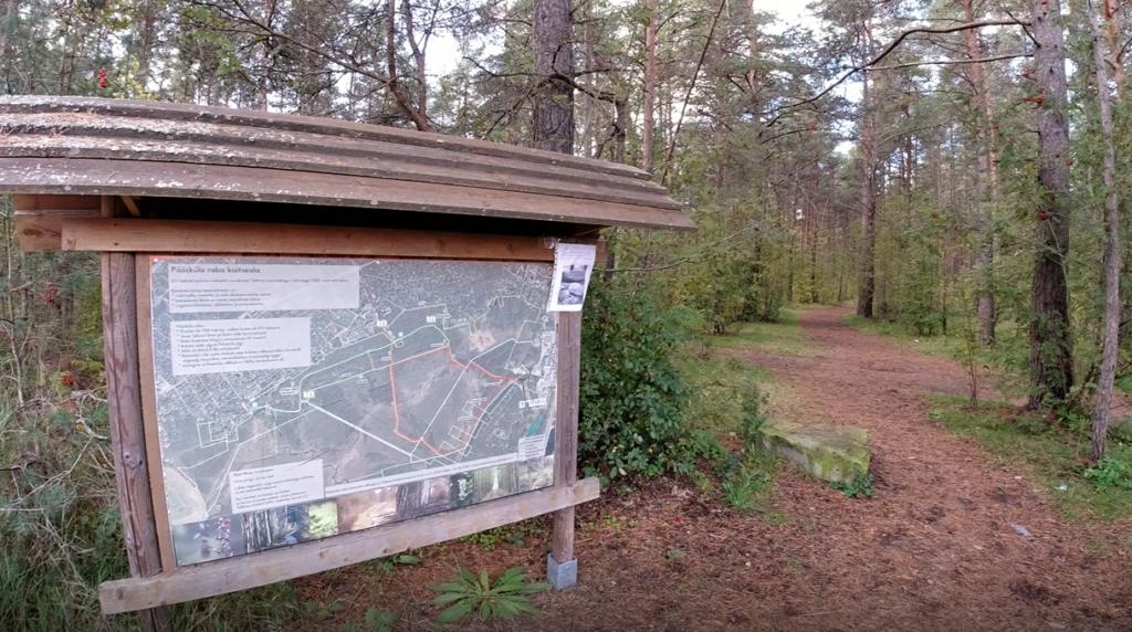 Pääsküla bog primavera na estônia