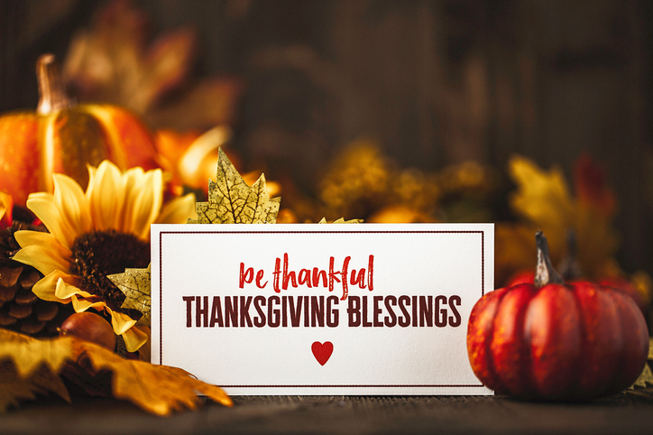 Thanksgiving still life background with pumpkins, acorns and message